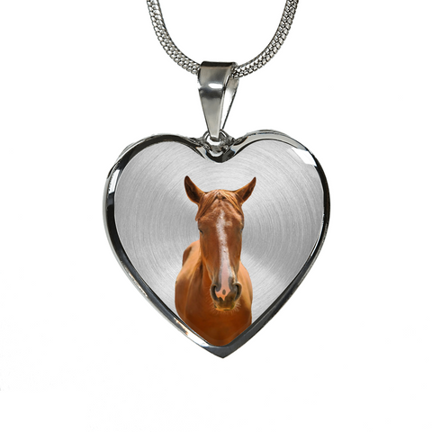 My horse chestnut Gold and Silver Necklace and Bangle