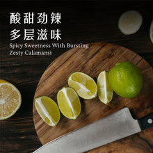 Load image into Gallery viewer, Pinxin Vegan Zesty Chilli 娘惹吉利(200g)