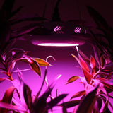 LED grow light ufo plus 300w/600w/800w/900w/1000w double chips full spectrum 410-730nm lamp for indoor medical plants flower