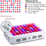 LED grow light full spectrum 300w 600w 800w 1000w 1200w 1500w 1600w 1800w 2000w double chip for all indoor plants