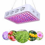 LED grow light full spectrum indoor plant growth 300w reflector lamp with heatproof casing for greenhouse hydroponic