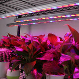 Waterproof light 108w uv ir LED grow strip bar lamp for greenhouse hydroponic indoor plant veg flower growth tent