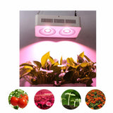 LED grow light populargrow 400w cob full spectrum for tent box/indoor greenhouse/commercial hydro plant similar to sunlight
