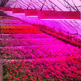 Full spectrum LED grow light 1000w 100 panel lamps for hydroponic medical vegs flower growing tent lighting plant