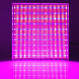 LED grow light 2pcs dimmable 200w plant lamp for hydroponics cultivation flowers medical indoor garden tent