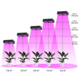LED grow light full spectrum 300w reflector for indoor greenhouse grow tent plants veg flower lamp plants led light