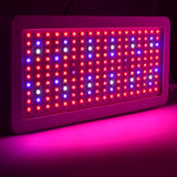 LED grow light full spectrum 300/600/800/1000/1200/1500/1800/2000w for indoor greenhouse tent plant