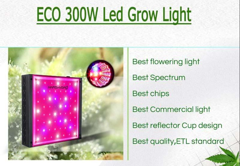 LED grow light hydro eco 300/600w full spectrum for indoor garden hydroponic greenhouse plants growing