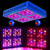 LED grow light reflector 600w full spectrum for seeds indoor garden hydroponic systems plant