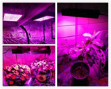 LED grow light full spectrum 1200w panel daisy chain connection plant for vegetable budding horticulture indoor
