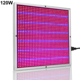 LED grow light 4pcs/lot 120w 1365leds ac85 265v phytolamp hydroponics aquarium for plants