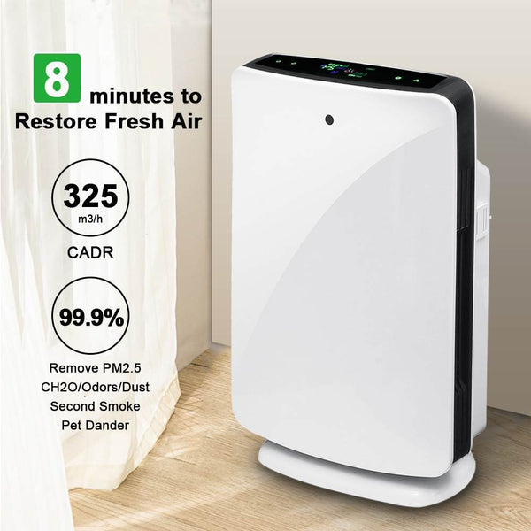 Air purifier true with hepa filter odor allergies remover for smoke dust vocs pollen pet dander pm2.5 home office use