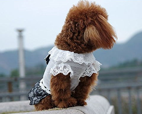 Lace Series Ribbon Dress Dog Clothes