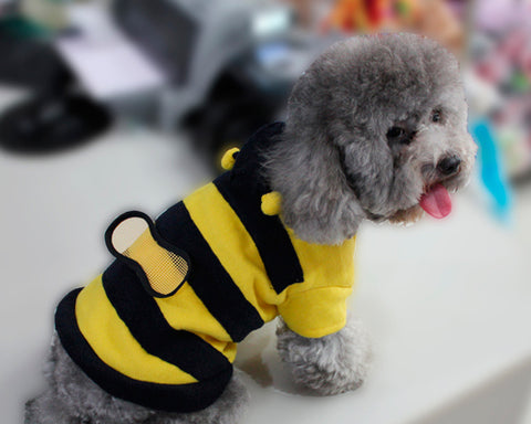 Animal Series Bee Costume Dog Hoodie Sweatshirt - Yellow and Black