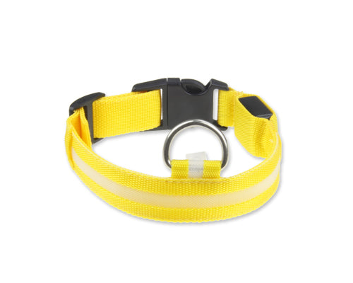 Bright Series Pet Dog Collar with LED Light