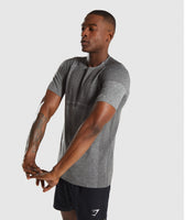 Gymshark Shadow X Seamless T-Shirt - Charcoal Marl 9