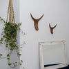 Carved Nguni horn wall hanging