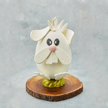 Easter Chocolate Egg - Bunny
