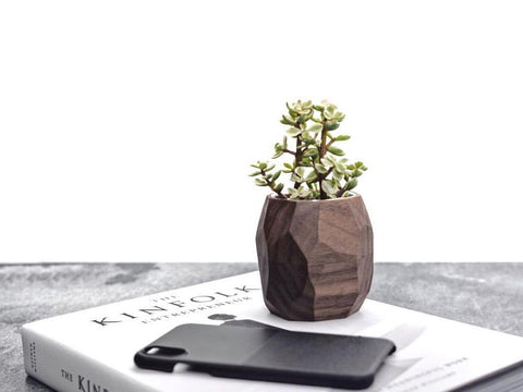 Eco Friendly Gift Idea for Plant Lovers