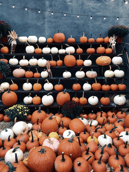 Natural decorations for fall