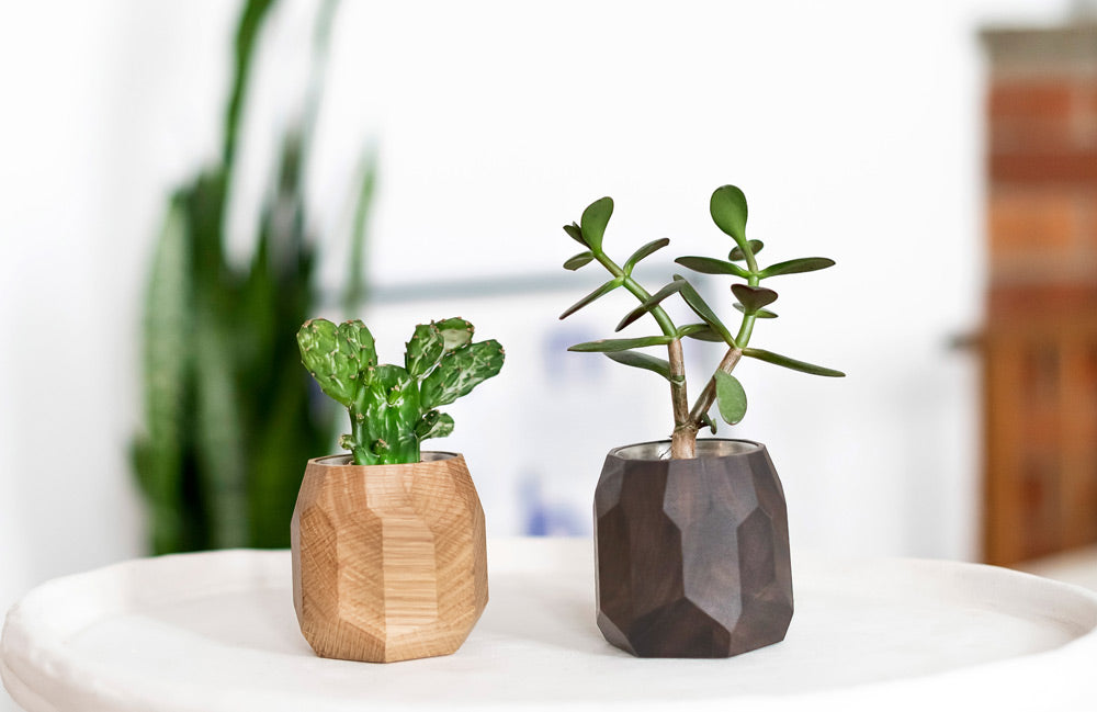 Wooden geometric planters