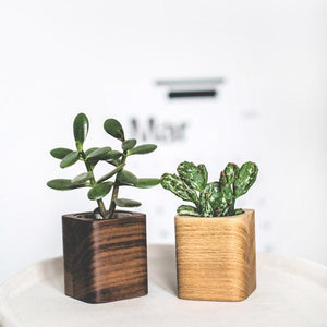 Wooden Succulent Planter