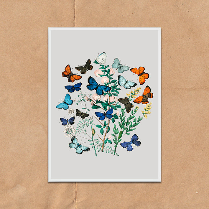Vintage Twist Butterfly Floral Illustration art print various colours framed and unframed