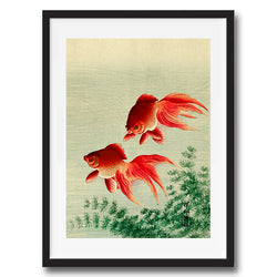 Vintage Japanese Goldfish illustration art print various sizes unframed and framed