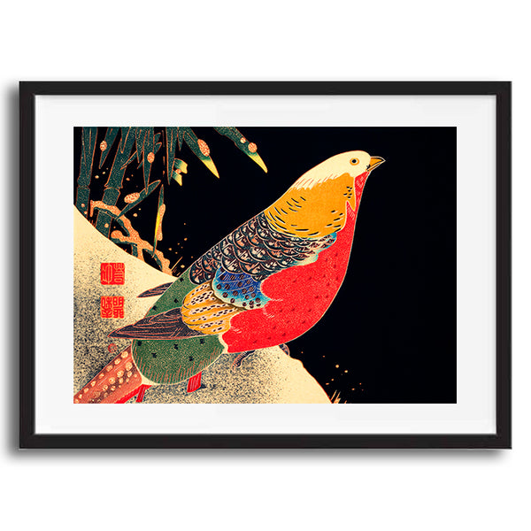 Vintage Japanese Bird illustration art print various sizes unframed and framed