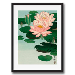 Vintage Japanese Water Lilies illustration art print various sizes unframed and framed