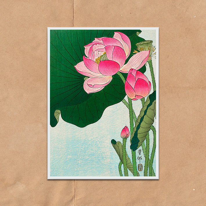Vintage Japanese Floral Lilies illustration art print various sizes unframed and framed