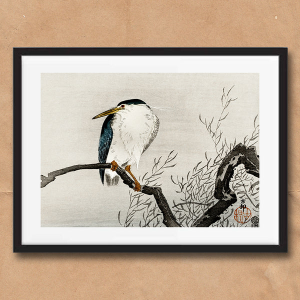 Japanese Kingfisher Bird retro vintage wall art print framed and unframed