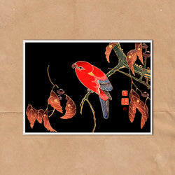 Japanese Red Bird retro vintage wall art print framed and unframed