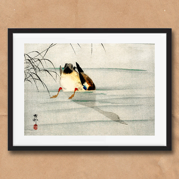 Mallard Duck retro vintage Japanese wall art print framed and unframed