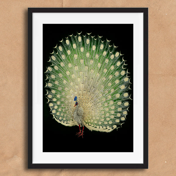Peacock painting retro vintage Japanese wall art print framed and unframed