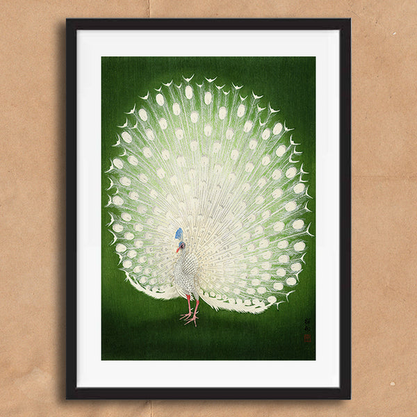 White Peacock retro vintage Japanese wall art print framed and unframed