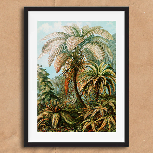 Fern Trees painting retro vintage curiosity wall art print framed and unframed