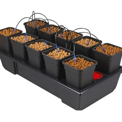 Small Wide Wilma (10 x 6 Ltr pots)