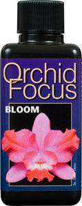 Orchard Focus Bloom