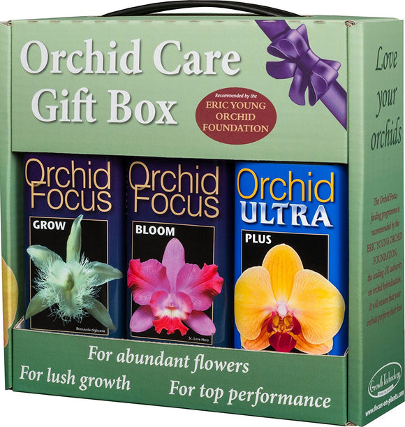 GT Orchid Focus Gift Pack 3 x 500ml