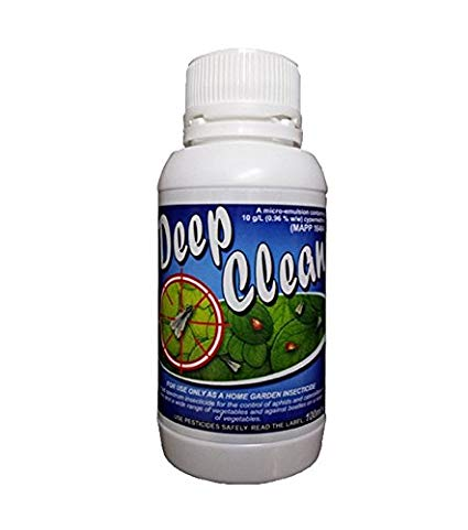 DEEP CLEAN Plant Care