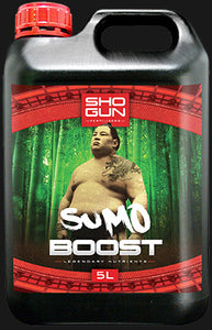 SHOGUN SUMO BOOST