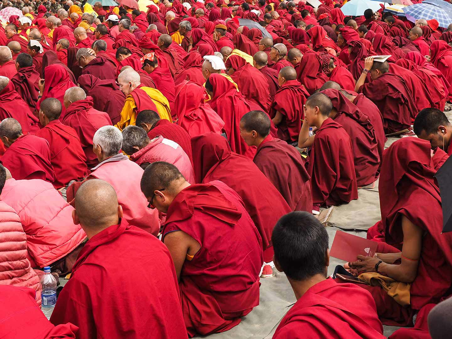 Monks from all over Ladakh attend the Dalai Lama's teachings, August 2016