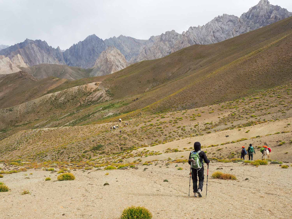 Trekking in Ladakh from Gyal to Kanji, descending from the Sarbantan La