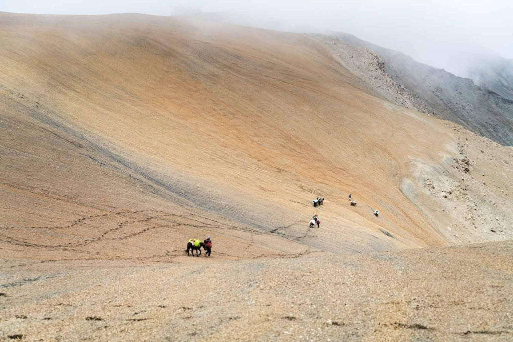 Descending on the correct route from the unnamed pass, Chomotang, Ladakh