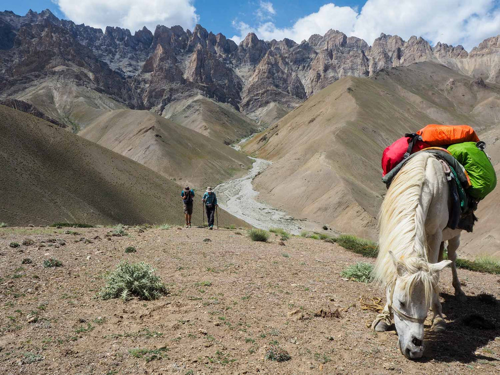 Trekking in Ladakh from Gyal to Kanji, ascending Yoma La