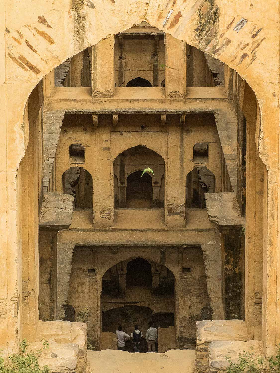 Neemrana Stepwell with Parrots, Rajasthan