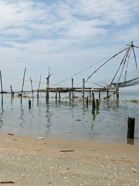 Chinese Fishing Nets Cochin 2 | Photos Kerala
