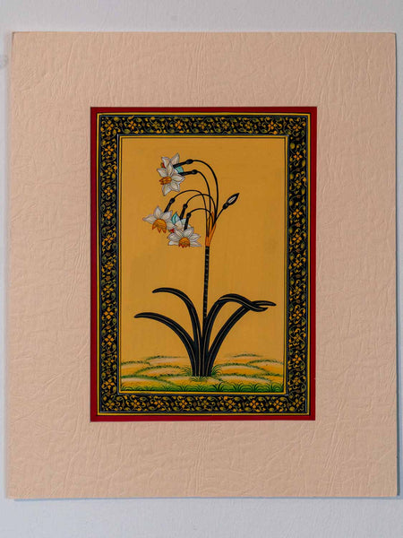 Indian Miniature Painting of Daffodils