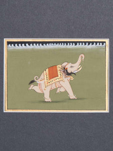 Indian Miniature Painting of a White Elephant detail